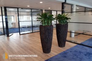 grote planten kantoor